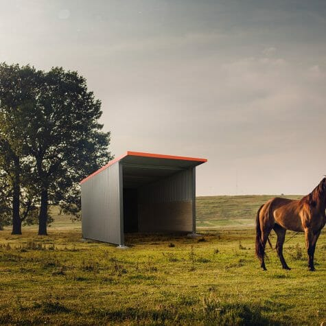 horse-shelter-victoria